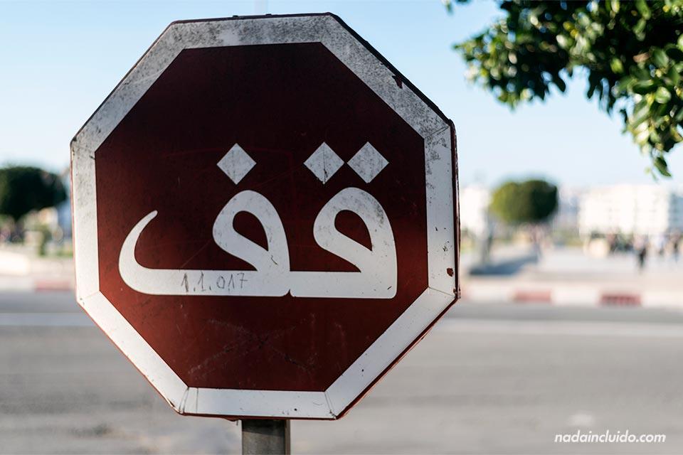 Como conocer gente arabe-126472